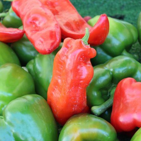 """/ɛ/ as in """"Pepper"""""""